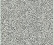 rc17084