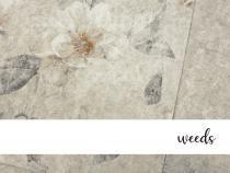 foto3-weeds-fronte